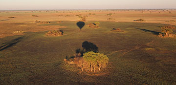 Kafue Nationalpark in Sambia: Buschsafari mit Ballon